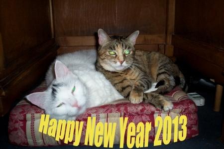 Buon 2013! Puffo e Nana
